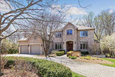 Homer Glen Single Family Home For Sale: 16060 Wildwood Lane