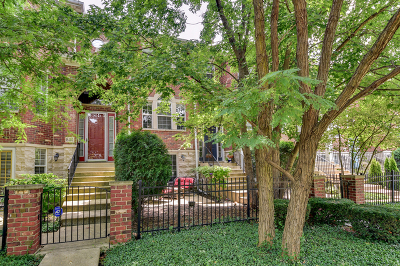 Naperville Condo/Townhouse For Sale: 846 Shandrew Drive