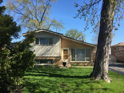 Bensenville Single Family Home For Sale: 1213 Stoneham Street