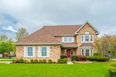 Buffalo Grove Single Family Home For Sale: 498 Thorndale Drive