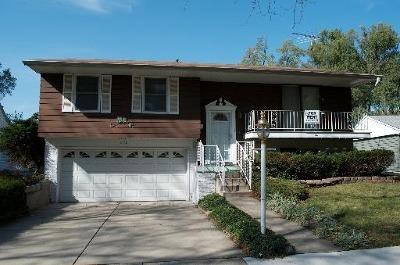 Buffalo Grove Single Family Home For Sale: 458 White Pine Road