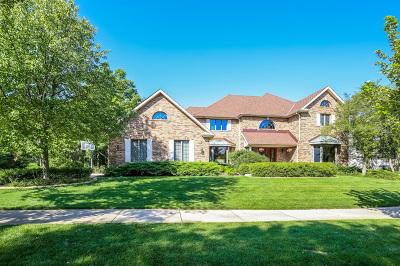 Burr Ridge Single Family Home For Sale: 118 Circle Ridge Drive