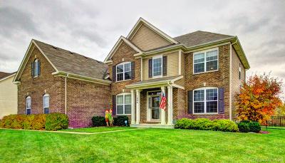 Aurora Single Family Home For Sale: 1254 Star Grass Lane