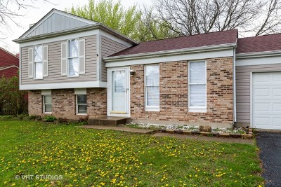 Algonquin Single Family Home For Sale: 1100 Tanglewood Drive