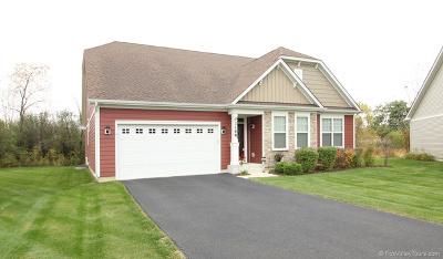 Aurora Single Family Home For Sale: 3168 Trillium Court West