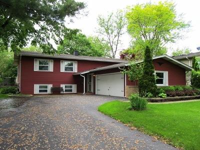 Lisle Single Family Home For Sale: 5724 Clover Drive