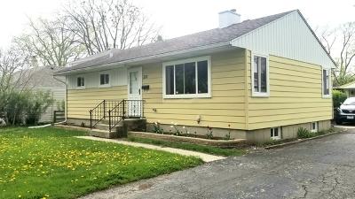 Des Plaines Single Family Home For Sale: 233 East Walnut Avenue