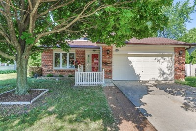 Schaumburg Single Family Home For Sale: 912 Apple Drive