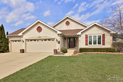 McHenry Single Family Home For Sale: 2102 Spring Creek Lane