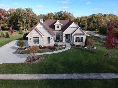 Burr Ridge Single Family Home For Sale: 8891 South Madison Street
