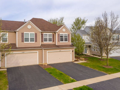 Joliet Condo/Townhouse For Sale: 1107 Colonial Drive