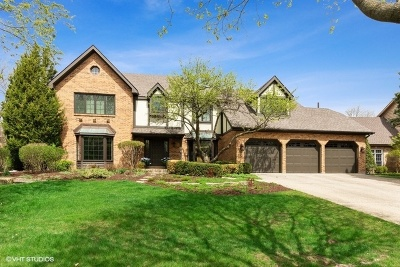 Burr Ridge Single Family Home For Sale: 529 60th Place