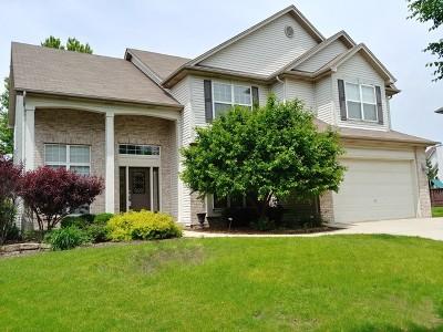 South Elgin Single Family Home For Sale: 19 Lake Ridge Court