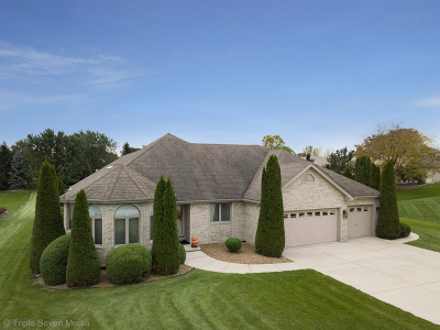 Homer Glen Single Family Home For Sale: 14703 West Edinburgh Court