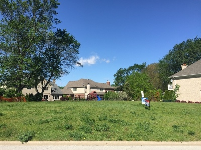 Palos Heights Residential Lots & Land For Sale: 303 Pinehurst Drive