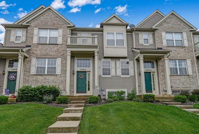 Plainfield Condo/Townhouse Price Change: 24631 John Adams Drive