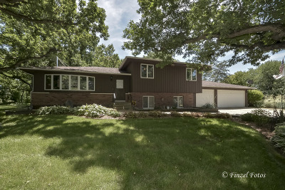 Maple Park Single Family Home For Sale: 48w713 Welter Road