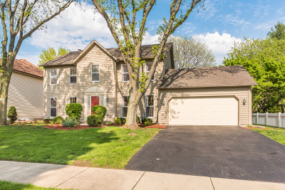 Naperville Single Family Home New: 2434 Remington Drive