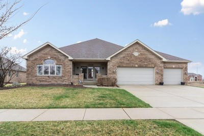 Frankfort Single Family Home Price Change: 22638 Hunters Trail