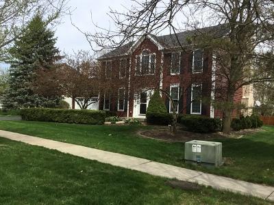 Batavia Single Family Home For Sale: 152 North Dixon Drive