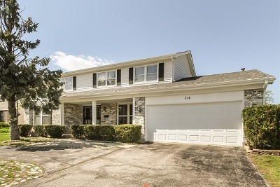Schaumburg Single Family Home New: 214 West Weathersfield Way