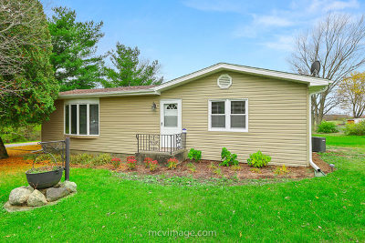 Lockport Single Family Home For Sale: 15340 South Gougar Road