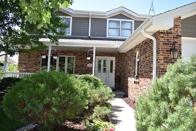 Orland Park Single Family Home For Sale: 16400 Stuart Avenue