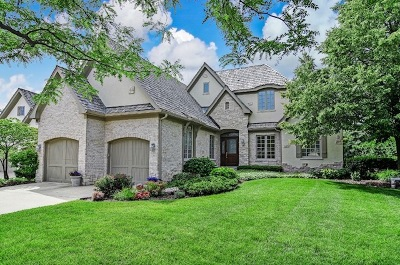 Oak Brook Single Family Home For Sale: 20 Forest Gate Circle
