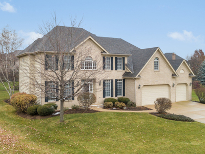 Naperville Single Family Home For Sale: 3719 Tall Grass Drive