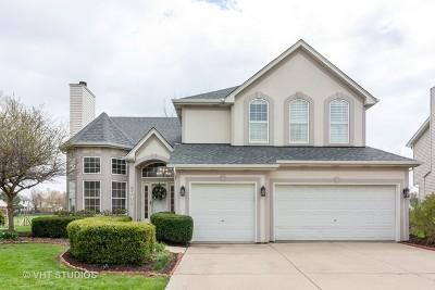 High Meadow Single Family Home For Sale: 5048 Prairie Sage Lane