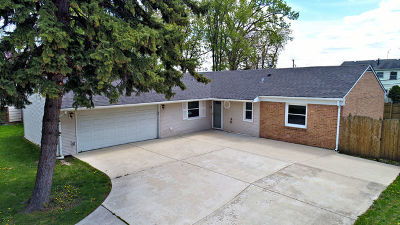 Bolingbrook Single Family Home For Sale: 549 Redwood Road