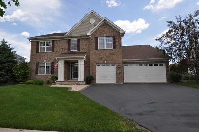 Wauconda Single Family Home For Sale: 2360 Stonybrook Street