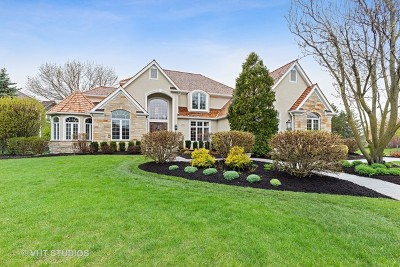 Mundelein Single Family Home For Sale: 29040 North Spoon Court