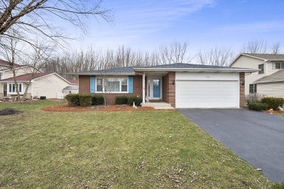 Bolingbrook Single Family Home For Sale: 1710 Hidden Valley Drive