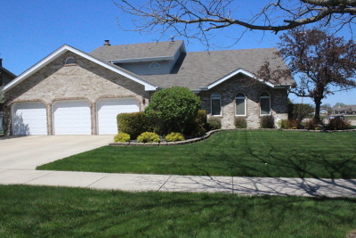 Tinley Park Single Family Home For Sale: 8002 174th Place
