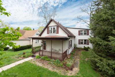 Carpentersville Single Family Home For Sale: 141 North Washington Street