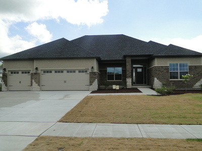 Plainfield Single Family Home For Sale: 16520 South Mueller Circle