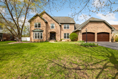 Prospect Heights Single Family Home For Sale: 212 Waterford Drive