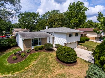 Lombard Single Family Home For Sale: 904 Arthur Drive