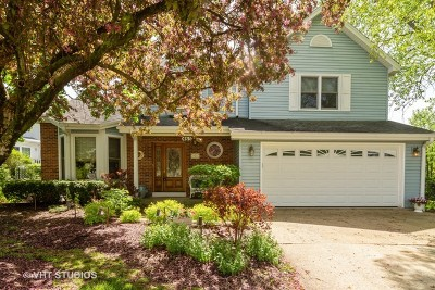 Lake Zurich Single Family Home For Sale: 465 Thistle Lane