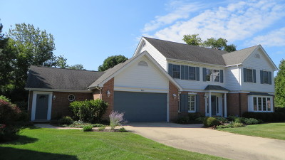Palatine Single Family Home For Sale: 361 South Harrison Court