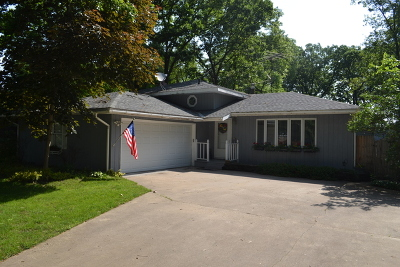Custer Park Single Family Home For Sale: 35811 Jay Drive