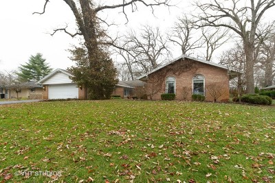 Kankakee Single Family Home For Sale: 9 Old Orchard Lane