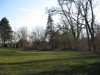 Palos Park Residential Lots & Land For Sale: Lot #038 131st Street