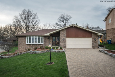 Palos Heights, Palos Hills Single Family Home For Sale: 12724 South 74th Avenue