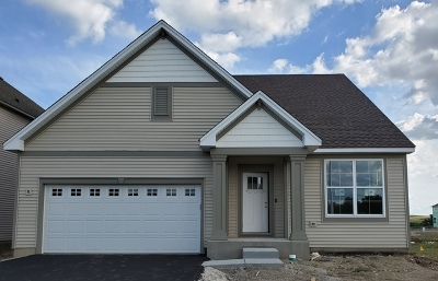 South Elgin Single Family Home For Sale: 1027 Blazing Star Street