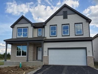 South Elgin Single Family Home For Sale: 1035 Blazing Star Street