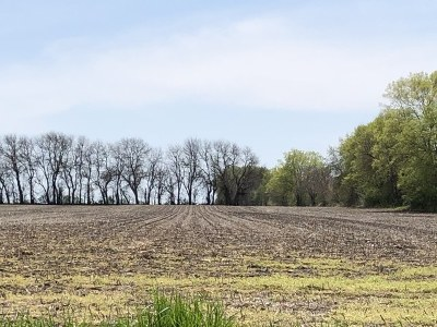 Custer Park Residential Lots & Land For Sale: Hwy 113 State Rte 113