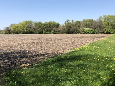 Custer Park Residential Lots & Land For Sale: Rte 113 State Rte 113