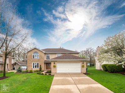 Homer Glen Single Family Home For Sale: 13648 South Shannon Drive